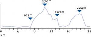 Heidelberg halfmarathon profile