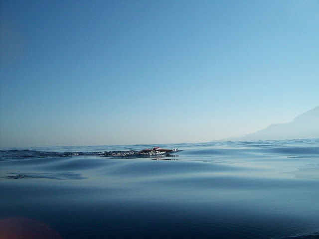 Swimming the Strait of Gibraltar - Europe to Africa - Gibraltar Straits Swim 2012 in magic conditions!